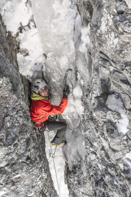 A woman ice climbing a route called  Birdbrain Boulevard on the Camp Bird Road near, Ouray, Colorado. — Stock Photo