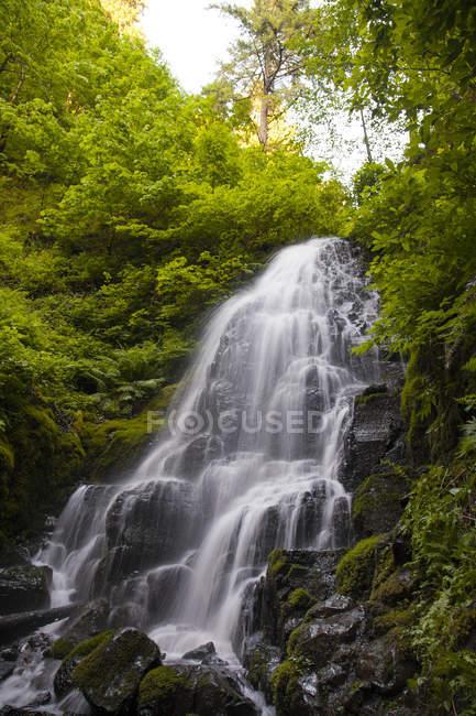 Сказочный водопад вдоль ручья Wahkeena на стороне Орегон Колумбия ущелье — стоковое фото
