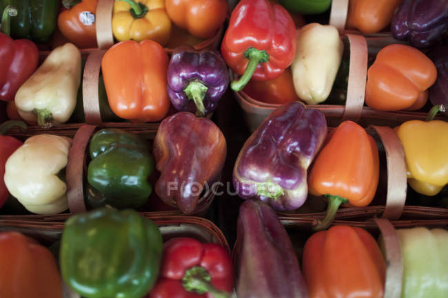 Baskets of colorful peppers on sale at a local farm market — Stock Photo
