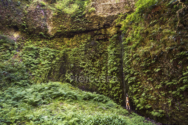 Distant view of woman in bikini standing below wall of ferns and mosses. — стокове фото