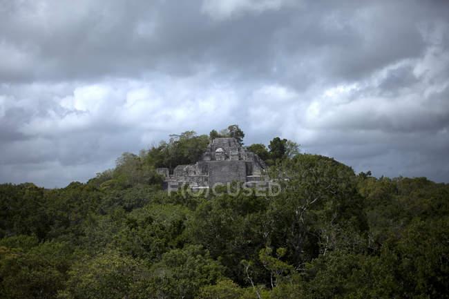 Храм я майя місто Calakmul піків джунглі в Calakmul біосферного заповідника, Кампече держави, півострова Юкатан, Мексика — стокове фото