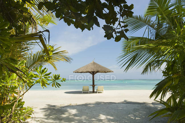 Lounge chairs and umbrella on beach at island resort in South Male Atoll, Maldives — Stock Photo