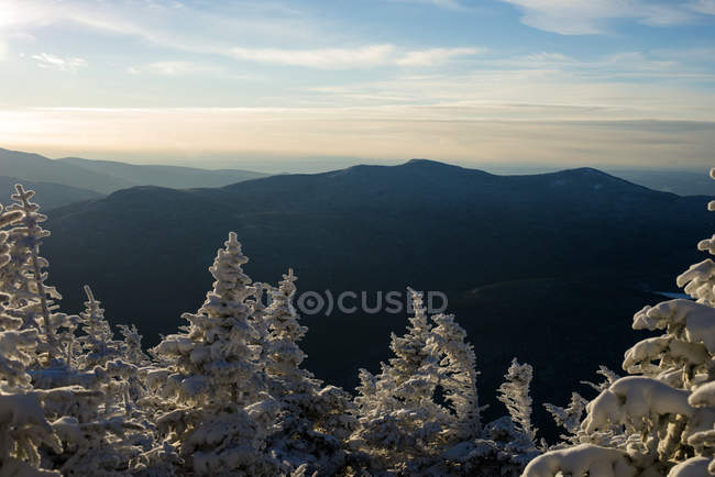 Kinsman ridge and snow covered spruce trees in Franconia notch — Stock Photo