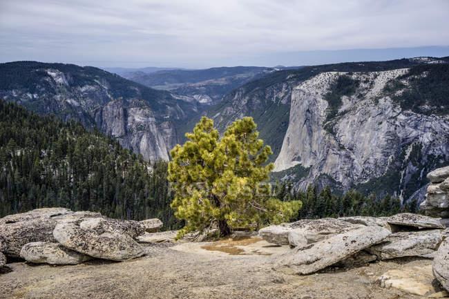 Images de paysage du Parc National de Yosemite en Californie (États-Unis) — Photo de stock