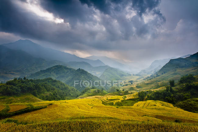 Reisfelder und Berge im Nebel und dramatische Gewitterwolken. Sapa, Vietnam, Asien — Stockfoto