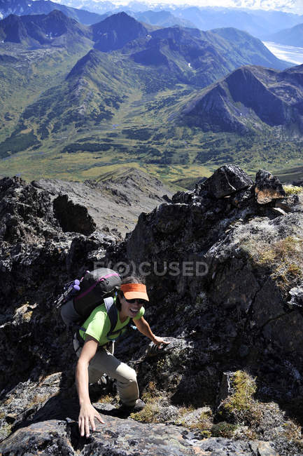Female hiker ascends the northeast ridge of Mount Williwaw (5445-feet), highest peak in the front range of the Chugach Mountains in Anchorage, Alaska August 2011.  Mount Williwaw is a class 3 route at the head of the Middle Fork Campbell Creek valley — стокове фото