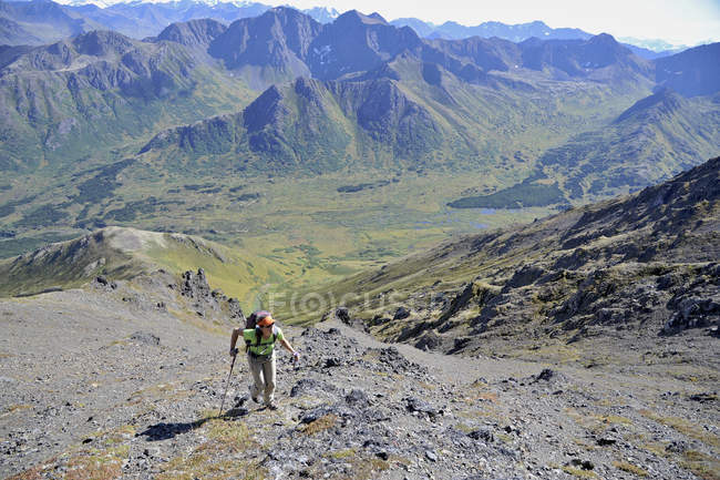 Female hiker starts her ascent up northeast ridge of Mount Williwaw (5445-feet), highest peak in the front range of the Chugach Mountains in Anchorage, Alaska August 2011.  Mount Williwaw is a class 3 route at the head of the Middle Fork Campbell Cre — стокове фото