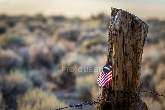 Ci bandiera bloccato in vecchio registro recinzione post con filo spinato su strada più bassa di prati estivi, Ca — Foto stock