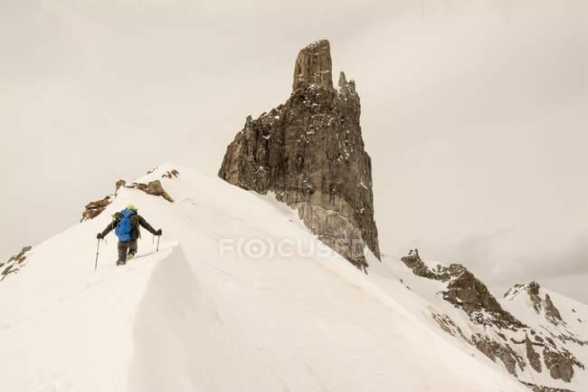 Vue arrière de l'homme qui marche sur neigeux lézard Head Peak, Uncompahgre National Forest, Colorado. — Photo de stock