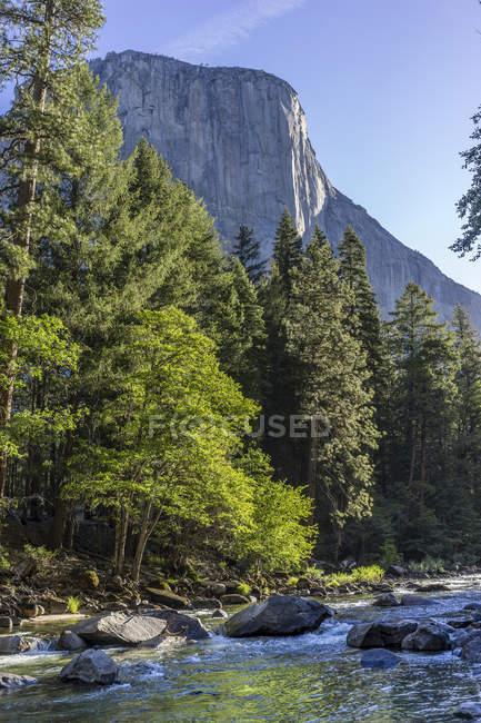 Vue de paysage du Parc National de Yosemite en Californie (États-Unis) — Photo de stock