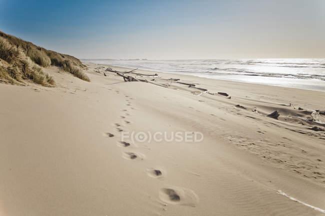Следы на песке на пляже Bullards, в Bullards пляж государство парк, штат Орегон — стоковое фото