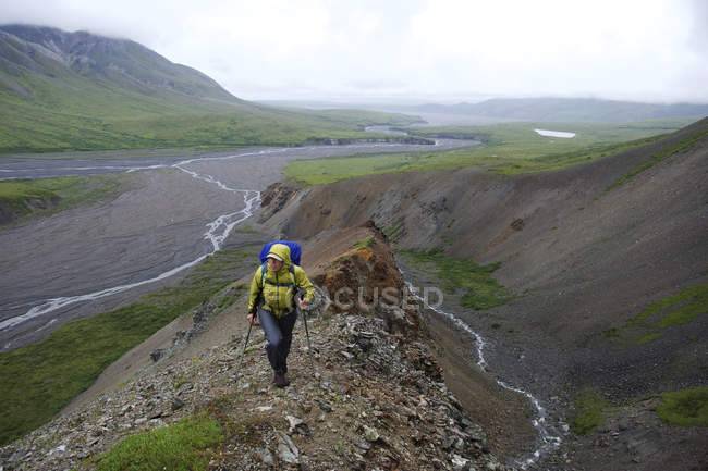 Woman backpacker hikes up Sunrise Creek in the Thorofare River valley in Denali National Park & Preserve, Alaska July 2011. Mount Eielson can be seen in the background. Much of the backpacking in the park is without trails forcing hikers to favor str — Stock Photo