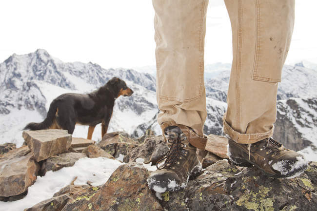 A dog and the legs and boots of hiker on the summit of Frosty Mountain, British Columbia, Canada. — Stock Photo