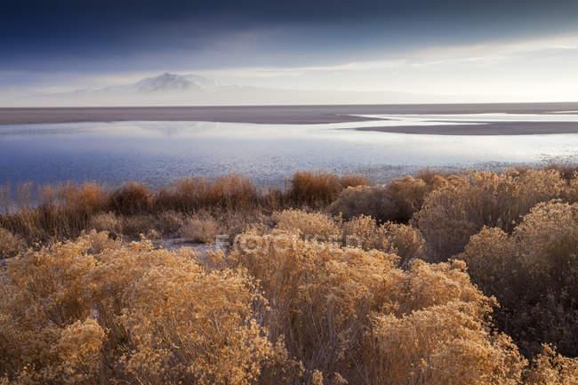 Antelope Island ist über den Great Salt Lake in Utah in der Ferne sehen. — Stockfoto