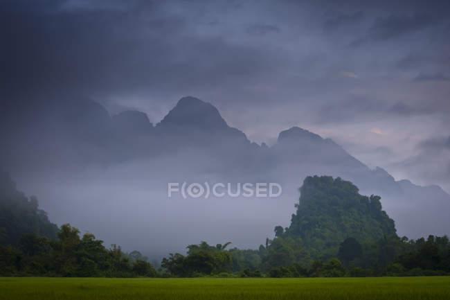 Пышные зеленые рисовые поля и удивительные зубчатые горы, покрытые растительностью в туман и облака, Вангвианг, Лаос, Азии — стоковое фото