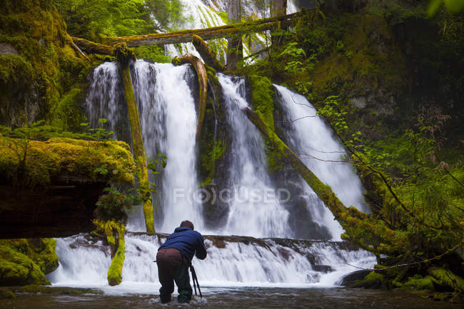 A photographer takes a picture of Lower Panther Falls along Panther Creek near Carson, Washington. — Stock Photo