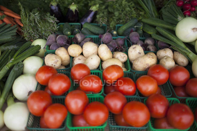Mix of fresh vegetables for sale at local farm market — Stock Photo