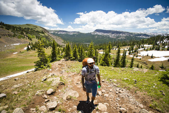A backpacker hikes through the Flat Tops Wilderness in Yampa, Colorado on a sunny day. — стокове фото