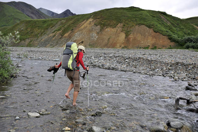 Woman hiker crosses Gorge Creek near Eielson Visitor Center in Denali National Park & Preserve, Alaska July 2011. Much of the backpacking in the park is without trails forcing hikers to favor stream beds and river valleys. — Stock Photo