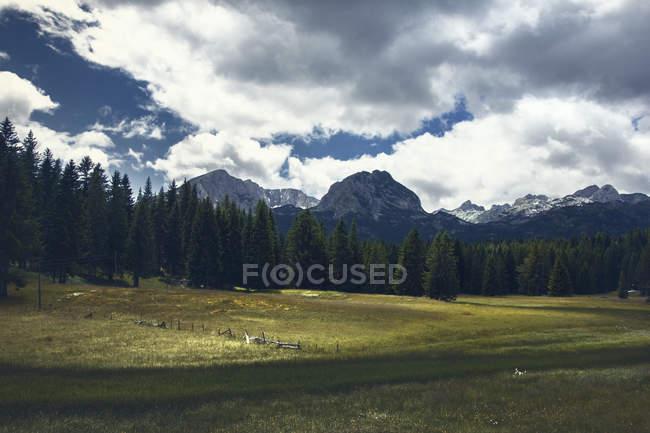 Vue sur les sommets de montagne Durmitor provenant d'un lac noir. — Photo de stock