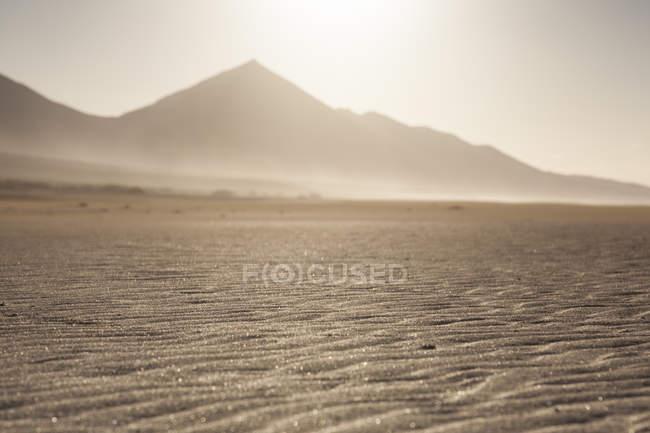 Пустынный песчаный пляж с никто в Фуэртевентура. Канарские острова — стоковое фото
