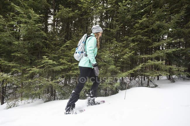 Mulher, caminhadas na floresta. — Fotografia de Stock