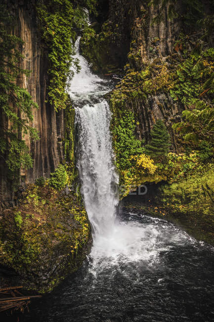 Scenic view of Beautiful Toketee Falls waterfall over basalt cliffs — Stock Photo