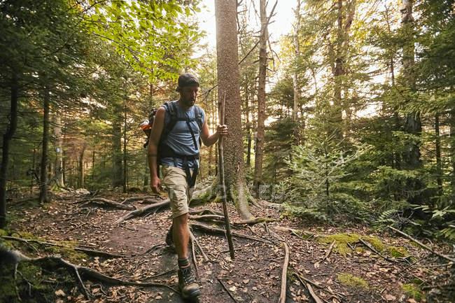Um homem de caminhadas ao longo da trilha dos Apalaches — Fotografia de Stock