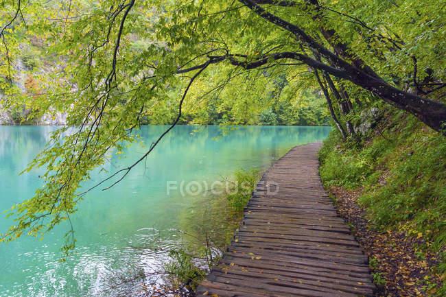 Пустой променаде у озера в Национальный парк Плитвицкие озера — стоковое фото