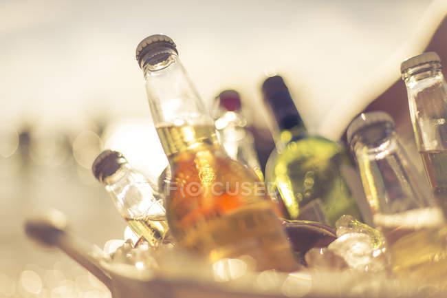 Крупным планом охлажденные напитки, Невада, США — стоковое фото