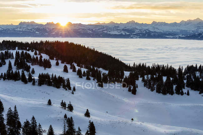 Scenic view of sunny morning at Geneva lake under clouds and Jura mountains with snow and spruces in Vaud Canton, Switzerland — Stock Photo
