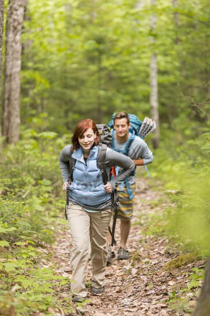 Молода пара, що ходить з рюкзаками на лісовій стежці — стокове фото
