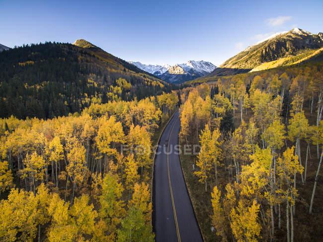 Vue aérienne de couleurs d'automne et route à Aspen, Colorado — Photo de stock