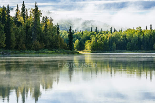Niebla de la mañana en Zlake cerca de Talkeetna, Alaska, Estados Unidos - foto de stock