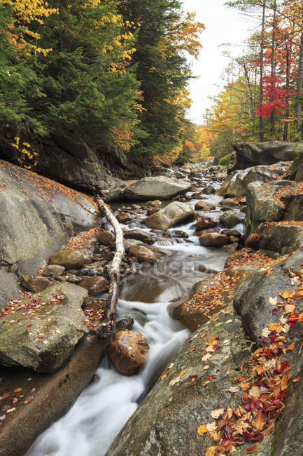 Stream trickles through colorful New Hampshire during the Fall season — Stock Photo