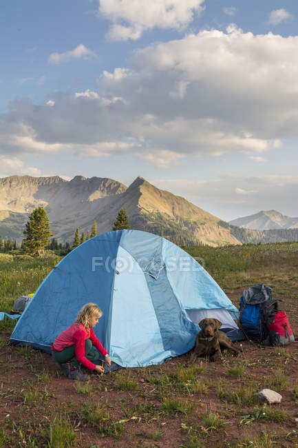 Young girl setting up camp tent in San Juan National Forest, Colorado, USA - foto de stock