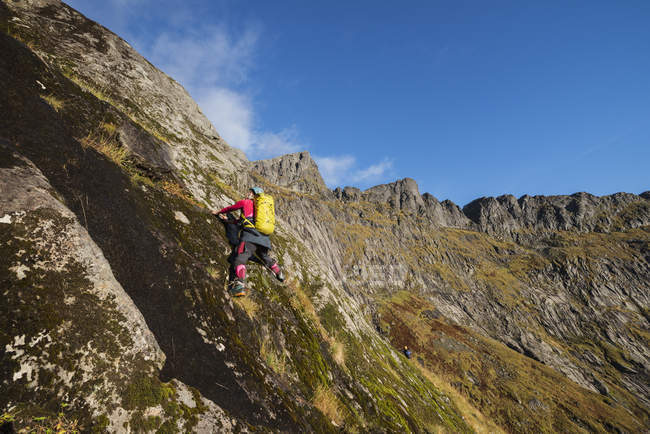 Female hiker climbing steep off trail terrain to Ertenhelltind, Moskenesy, Lofoten Islands, Norway — Stock Photo