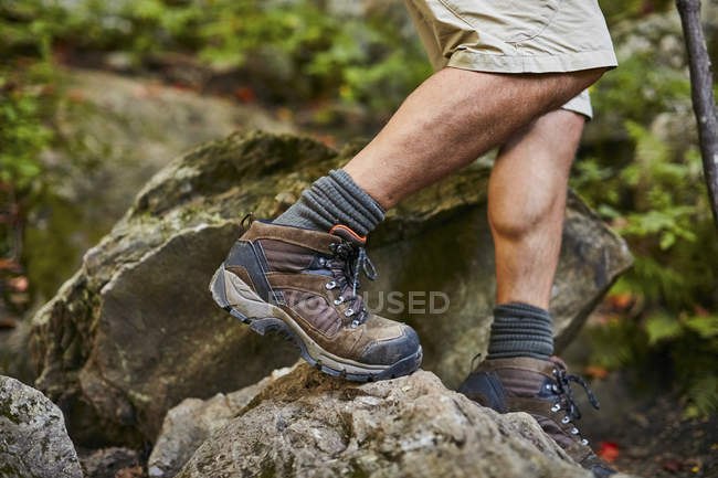 Close-up Of Male Hiker At Appalachian Trail — Stock Photo