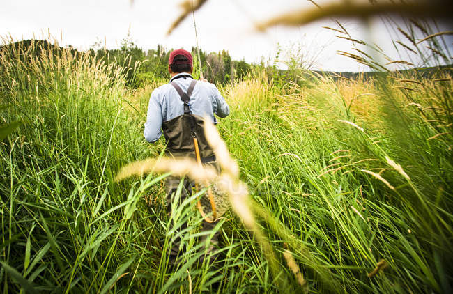 Rear View Of Fly Fisherman Walks Through Tall Grass — Stock Photo