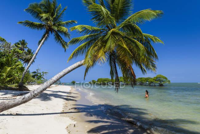 Donna che cammina nel mare sulla bellissima spiaggia sotto la Palma di noce di cocco nell'isola di Boipeba, Sud Bahia, Brasile — Foto stock