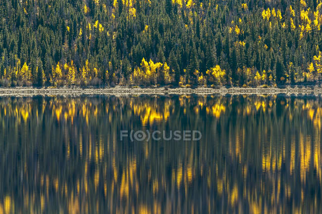Scenic view of forest reflecting in lake in autumn — Stock Photo
