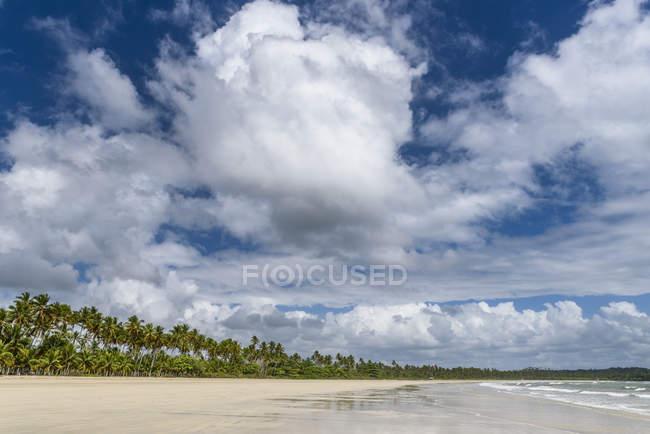 Wunderschönen tropischen Strand mit Kokosnusspalmen unter blauem Himmel mit Wolken, Insel Boipeba, Süd-Bahia, Brasilien — Stockfoto