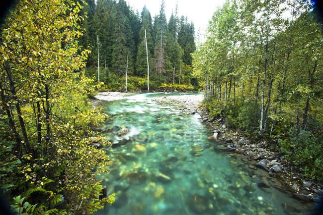 Klares Wasser eines reißenden Flusses in Revelstoke, Britisch-Kolumbien, Bewegungsunschärfe — Stockfoto