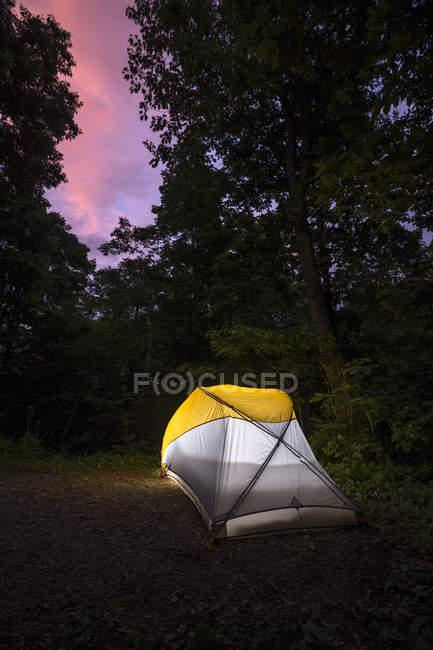Camping dans le Parc National de Shenandoah pendant l'été — Photo de stock