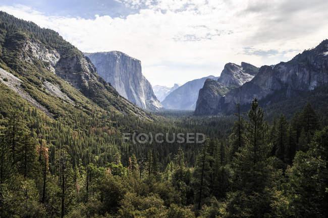 Vue de tunnel emblématique dans le Parc National de Yosemite — Photo de stock