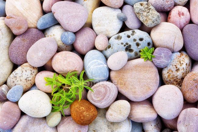 Vista de alto ângulo de pedras sobre a costa de Marjal Del Moro — Fotografia de Stock