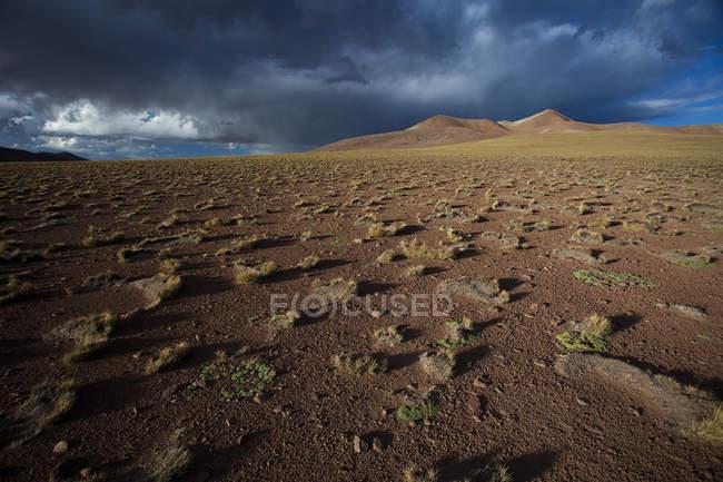 Atacama-Wüste in der Nähe von Salar de Uyuni — Stockfoto