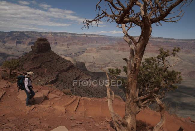 Alpinista de mulher caminhando na trilha de Kaibab, Parque Nacional do Grand Canyon, Arizona. — Fotografia de Stock