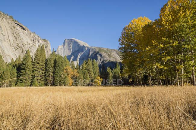 Vue panoramique au Parc National de Yosemite paysage d'été — Photo de stock