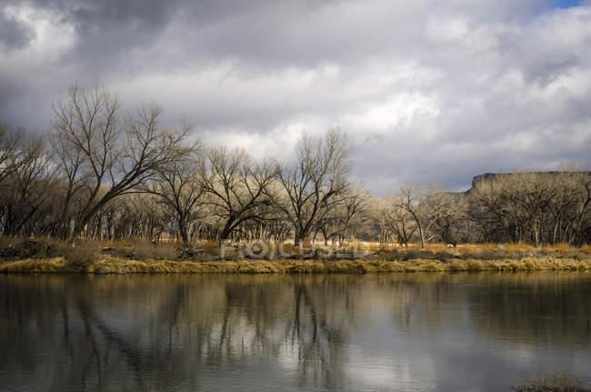Paesaggi e dettagli lungo San Juan River sotto la diga di Navajo — Foto stock